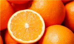 توزیع میوه شب عید؛ پانزده درصد ارزان تر