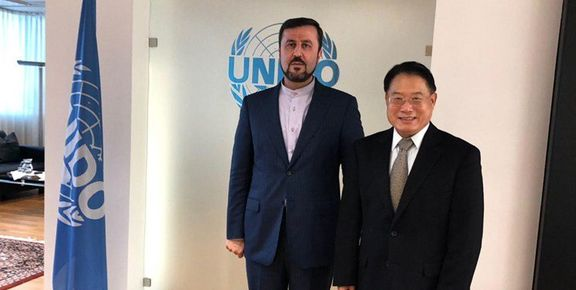 یونیدو برای گسترش همکاری با ایران اعلام امادگی کرد