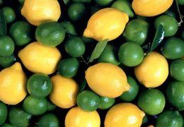 بازار لیمو ترش و شیرین در دستان 5 نفر + فیلم