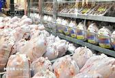 قیمت مرغ دیگر افزایش نخواهد یافت