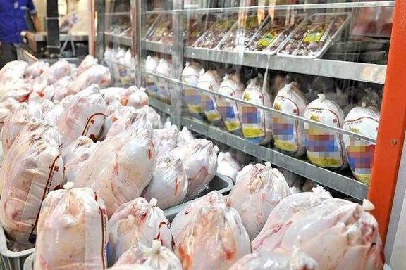 هر کیلو مرغ زنده 13 هزار تومان اعلام شد