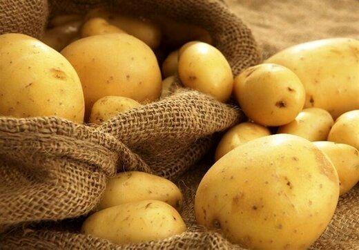 تغییرات قیمتی انواع کالاهای اساسی / سیب زمینی در صدر گران ترین کالا قرار گرفت