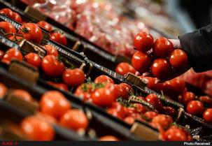 علت افزایش قیمت گوجه فرنگی   چیست؟