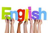 قیمت انواع بسته های آموزشی زبان انگلیسی