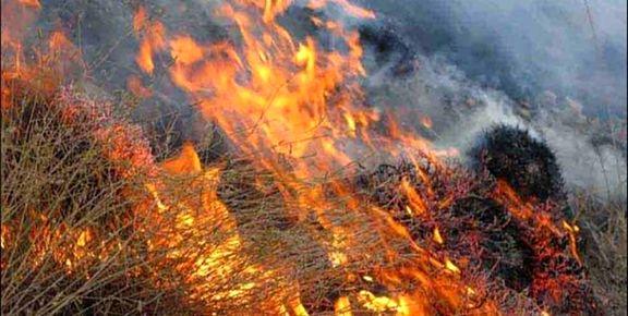 3 هزار متر مربع از مراتع لردگان دچار حریق شد