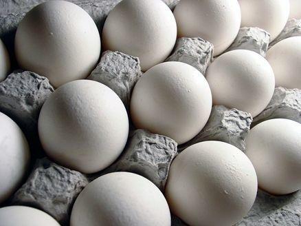 قیمت تخم مرغ را می توان به کیلویی 12 هزار تومان رساند