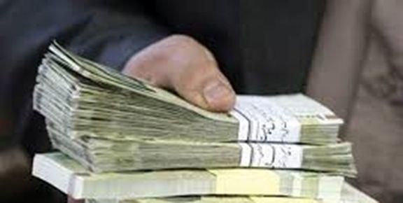 رضوی پور: سازمان قدرت اجرایی ندارد اما بودجه دارد