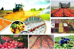 استانداردهای تجارت محصولات کشاورزی باید بریا صادرات به اروپا اصلاح شود