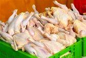 مرغ ارزان نشود واردات را در دستور کار قرار می دهیم