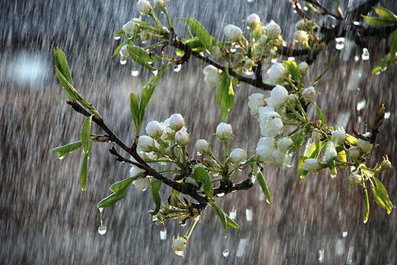 بارش های سیل آسا در جنوب و غرب کشور آغاز شد