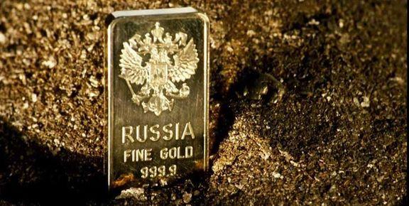 ذخایر ارز و طلای روسیه در یک هفته شاهد افزایش 6.5 میلیارد دلاری بود