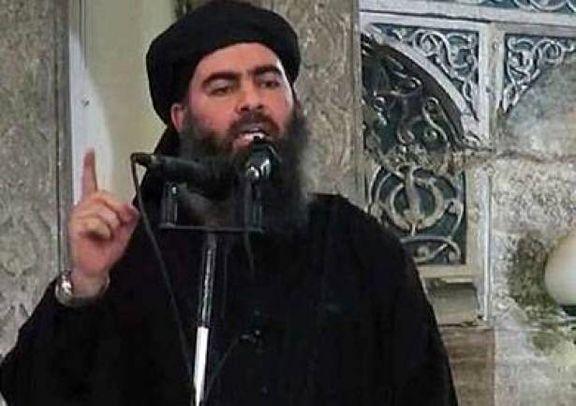 ابوبکر بغدادی پیدا شد