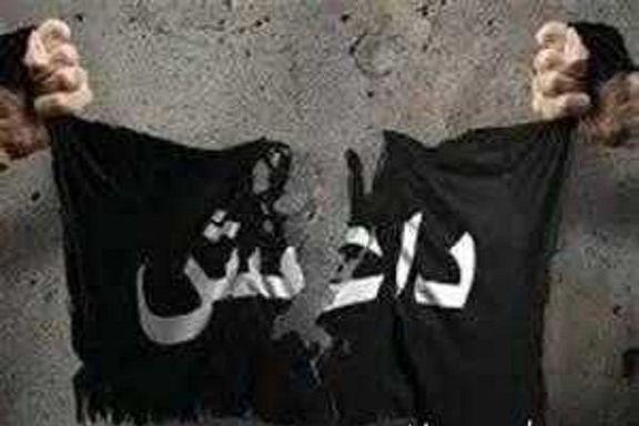 قسد: کار داعش تمام است