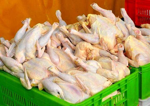 قیمت مصوب مرغ  هر کیلو ۱۱ هزار و ۵۰۰ تومان