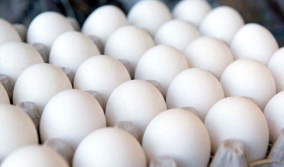 مرغداران خواهان افزایش قیمت مصوب تخم مرغ