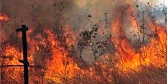 وقوع رعد و برق مراتع بهبهان را دچار آتشسوزی کرد