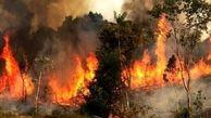 ۱۴ هزار مورد آتش سوزی در جنگلهای کشور طی یک دهه!