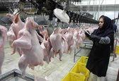 قیمت هر کیلو مرغ در بازار 15 هزار تومان