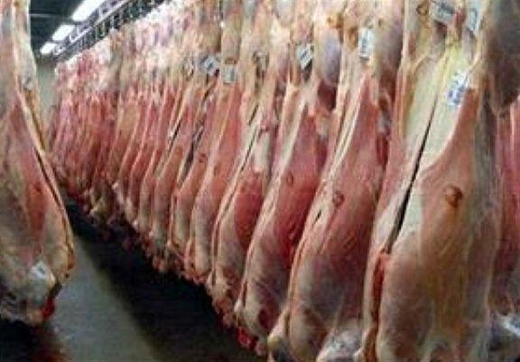 توزیع گسترده گوشت قرمز  ۲۹ هزار تومانی در روزهای آینده