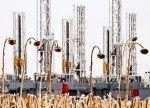 کاهش قیمت نفت با ادامه بحران کروناویروس در هند
