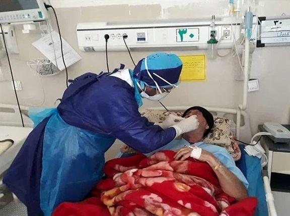 فوت ۲۱۶ نفر در شبانه روز گذشته بر اثر کرونا