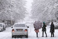 تصویری عجیب از  غرق شدن خودروها در برف در پیرانشهر