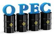 قیمت نفت اوپک اندکی افزایش یافت