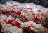 مرغ ارزان شد/ هرکیلو  ۳۰۰ تومان کاهش یافت