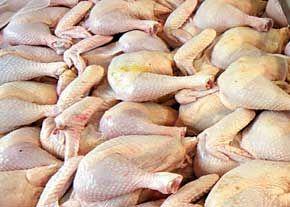 قیمت مرغ به 8 هزار تومان رسید
