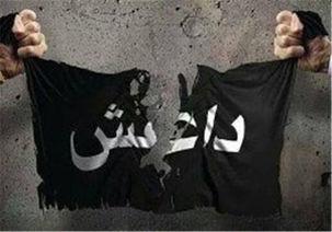 جعبه سیاه داعش کشف شد/ دسترسی به یک فایل سری مهم داعش در استان الانبار