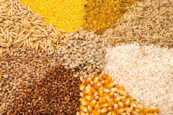 شروع روند کاهشی قیمت جهانی گندم و برنج