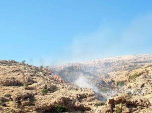 آتش سوزی دیگری در کهگیلویه بویر احمد/جنگل های باشت دچار حریق شد
