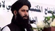 طالبان مسئولیت ساقط کردن هواپیمای ارتش آمریکا را بر عهده گرفت