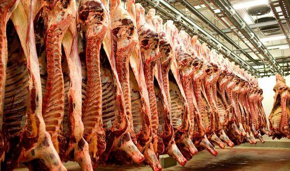 کمبودی در عرضه گوشت در ایام محرم وجود ندارد/ کاهش قیمت گوشت در بازار