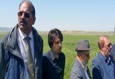 همکاری فائو با بخش کشاورزی ایران