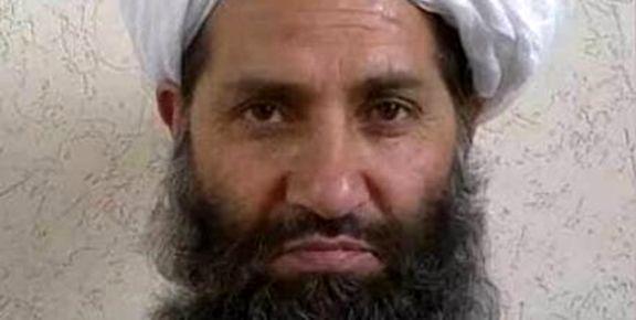 اظهارات آمریکایی ها طالبان را نسبت به صلح  اخیر مشکوک کرد