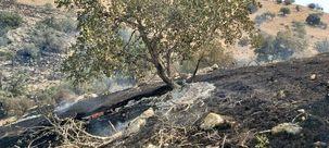 آتش سوزی اولیه خاییز مهار شد