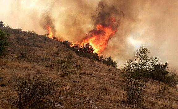 روند تخریب جنگل ها با آب فشانی توسط هلیکوپترها کاهش یافته است