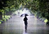 آخرین وضعیت آب وهوای مناطق کشور/ بارش باران و وزش بادهای شدید موقتی طی ۵ روز آینده