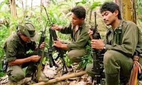 کلمبیا با شورشیان فارک صلح می کند