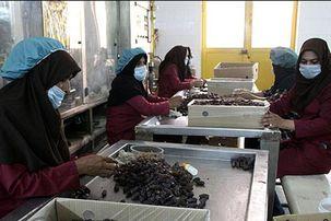 تغییر شرایط بازنشستگی زنان/زنانی که شغل خود را از دست داده اند می توانند خود را بازخرید کنند