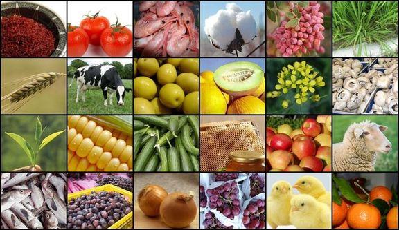 افزایش قیمت جهانی مواد غذایی به بالاترین سطح در ۶ سال اخیر