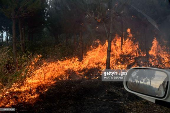 آتشسوزیهای شیلی به اعلام وضعیت قرمز در این کشور منجر شد+ عکس