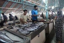 آخرین قیمت انواع ماهی در بازار