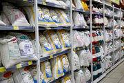 افزایش بیش از 124 درصدی قیمت برنج تایلندی در دی ماه
