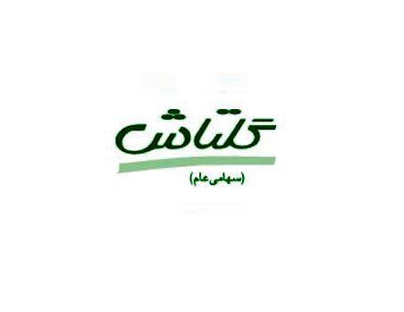 «شگل» افت 21 درصدی درآمد نسبت به خرداد را ثبت کرد