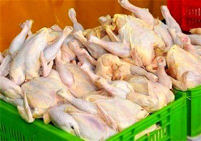 افزایش قیمت مرغ در ماه رمضان منتفی است
