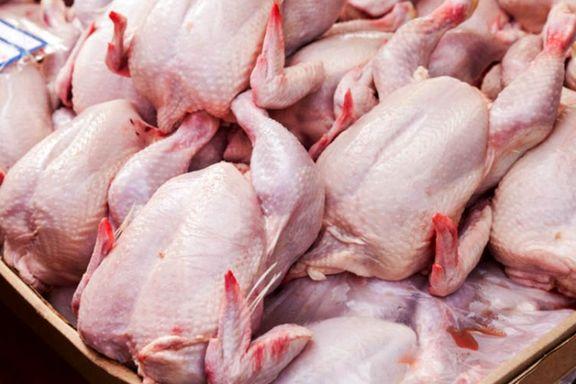 افزایش ۱۳۴ درصدی قیمت مرغ نسیت به سال گذشته