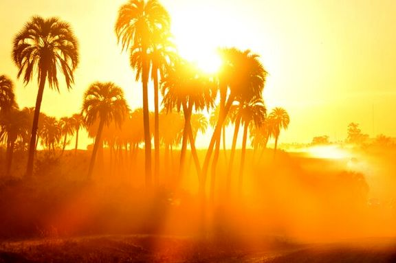 خوزستان به دلیل دمای بالای 50 درجه تعطیل می شود