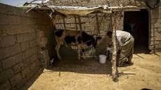 استاندار خوزستان:  اگه مشکل آب غیزانیه حل نشه میزارمتون تو خونه آب رو روتون قطع میکنم